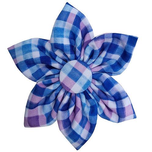 Purple Check Pinwheel by Huxley & Kent