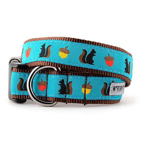 Squirrelly Collar & Lead Collection