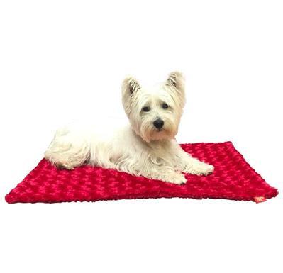 Small Blanket, Red Rosebud