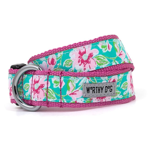 Watercolor Floral Collar & Lead Collection