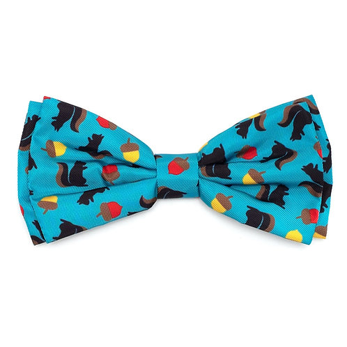 Squirrelley Bow Tie from The Worthy Dog