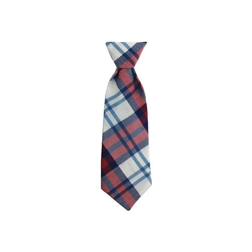 Americana Madras Long Tie