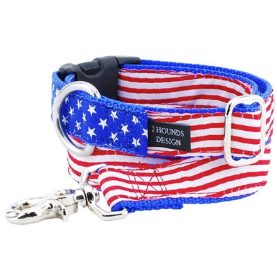 Stars & Stripes Essential Collars and Leads