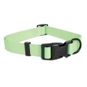 Aspen Pet® Glow in the Dark Dog Collar Light Green