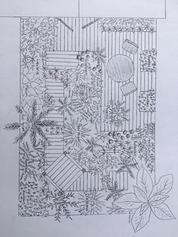 Jungle garden - BBC Gardeners' World