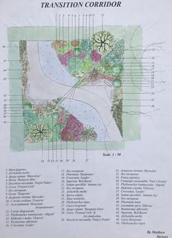 Garden design Tasman/Nelson
