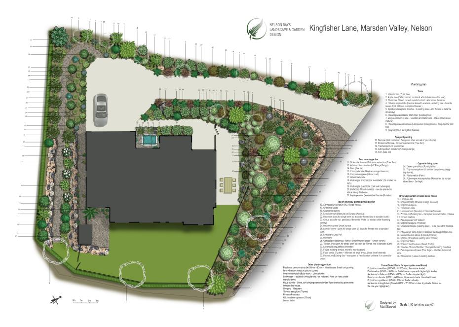 Landscape design - Garden Nelson