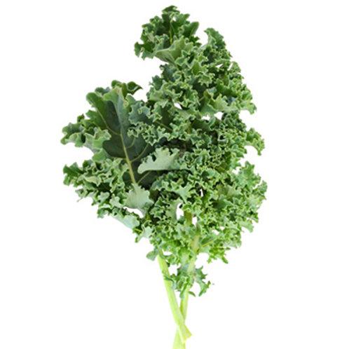 Kale 羽衣甘藍