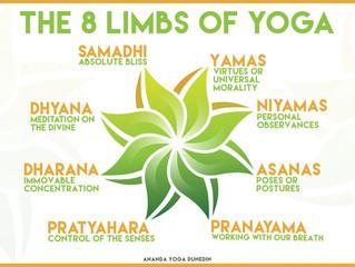 International Yoga Day Encourages Peace