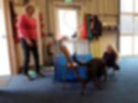 kind en hond (1).jpg