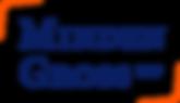 MindenGross_logo.png