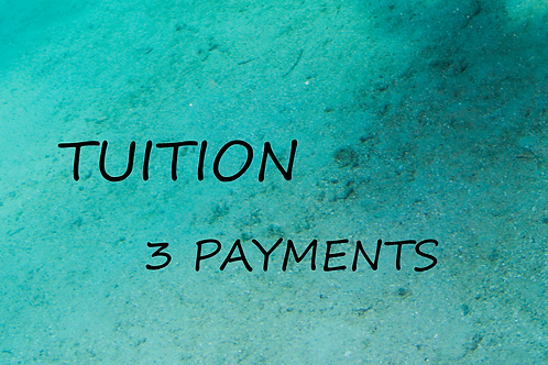 3 payment option