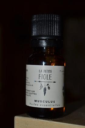 Huile essentielle Musculus essential oil 15 ml