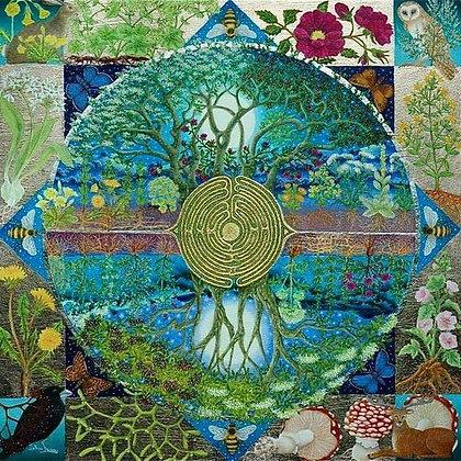 Atelier rencontre spirituelle avec l'esprit des plantes