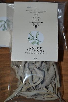 Sauge blanche 14 gr white sage