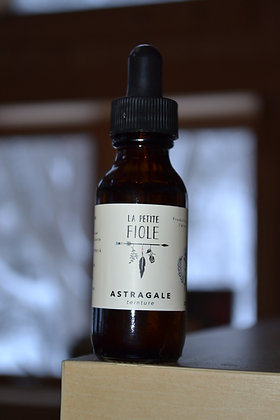 Teinture Astragale tincture 50 ml