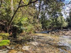 Western Creek