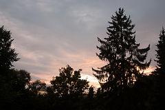 vue sur jardin B&B moensberg