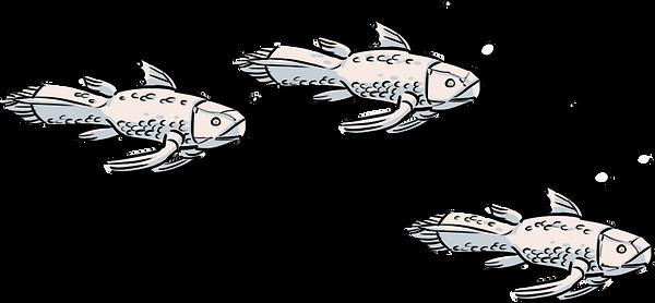 3Fish.png