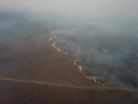 ONU Meio Ambiente: incêndios na Amazônia são alerta para crises ambientais no mundo