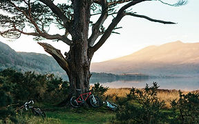 bikes_by_lake.jpg
