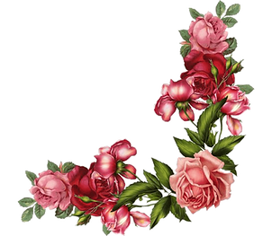 png-transparent-red-and-pink-roses-borde
