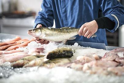 Baltic Five Heiligenhafen Fisch.jpg