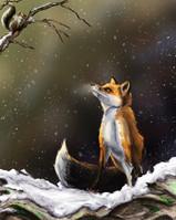 Fox & Friend