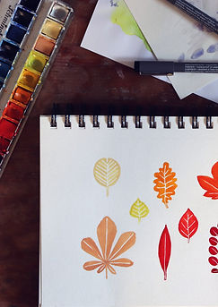 portfolio_illustration.jpg