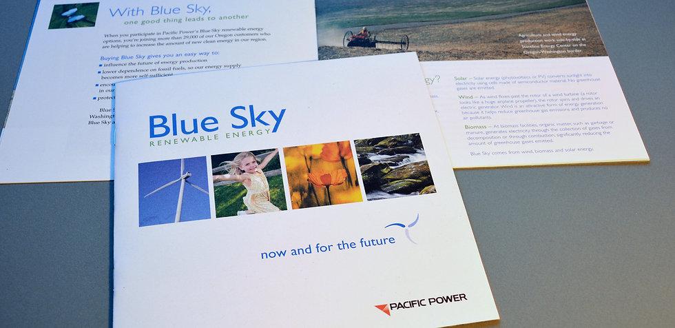 Blue Sky branding.jpg