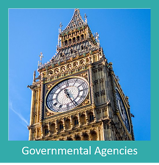 Government agency box.png
