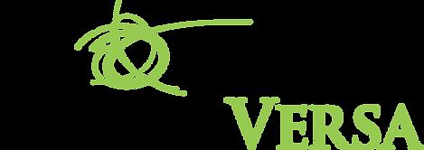 VVE_StandardLogo.png