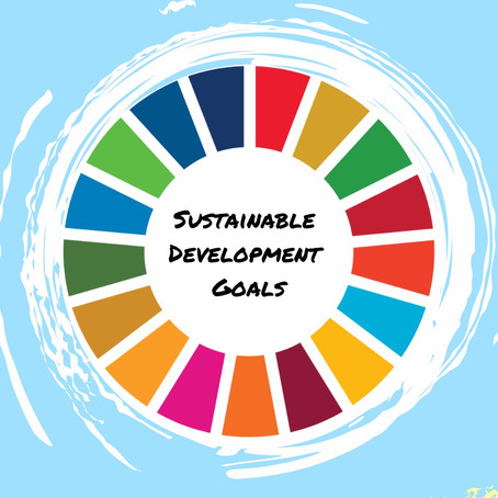 About the Sustainable Development Goals