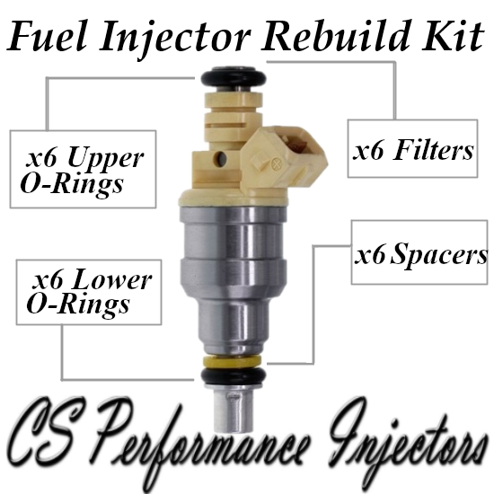 Fuel Injector Rebuild Repair Kit fits INP-012 for Chrysler Dodge Plymouth 3.0 V6