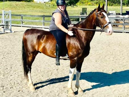 Fat Phobia and Horses