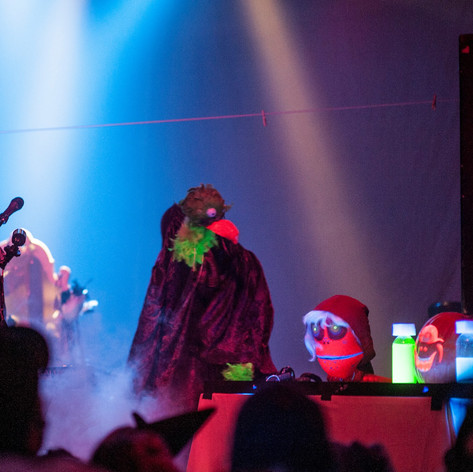 Reighnbeau had us accompany them with puppetry when they opened for Cocorosie on Halloween 2013 at the Sunshine Theater in Albuquerque, NM
