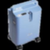 Koncentrator tlenu dla zwierząt EverFlo Pilips Respironics