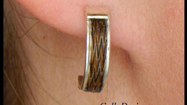 Sterling Silver Curved Earring
