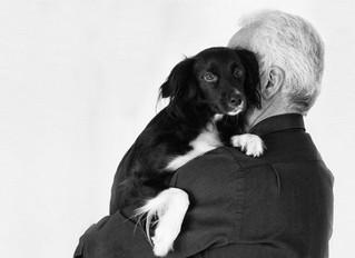 Pet Terapia beneficia saúde dos idosos