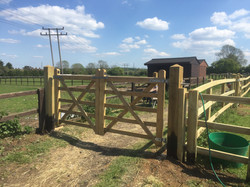 Two 4 foot gates