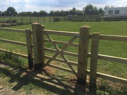 4 foot gate
