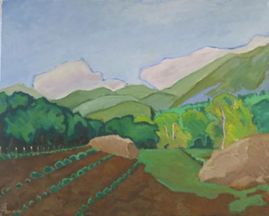 through the pasture