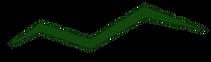 valleyvetsymbol.png