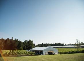 Singletree Winery - Abbotsford Wedding Venue - Fraser Valley Wedding Photographer