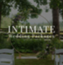 IntimateweddingpackageICON.jpg