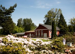 Deep Roots Family Farm - Maple Ridge Wedding Venue - Maple Ridge Wedding Photographer