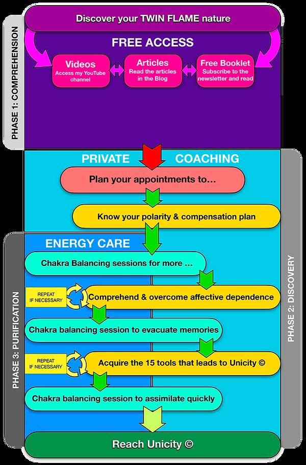 """""""L'Unicité"""" or Unicity Plan Twin Flames MapMind - US"""