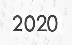 NOV-DIC 2020