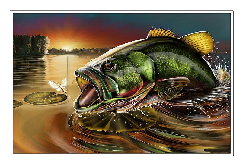 Georgia Bass