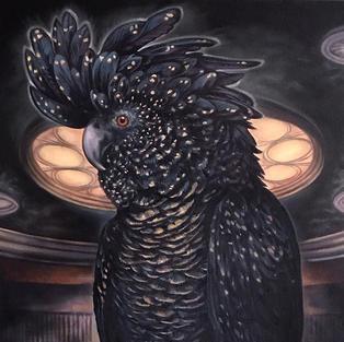 Black Cockatoo FULL.jpg